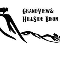 GrandView & HillSide Bison