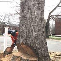 Tomahawk Tree Service, LLC