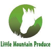 Little Mountain Produce