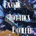 Exotic Aquatics Boulder