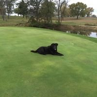 Bicknell Country Club