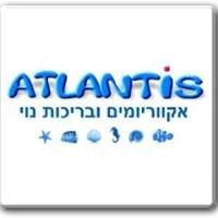 אטלנטיס אקווריומים ובריכות נוי