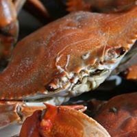 Roux 49 Seafood and Grill, LLC