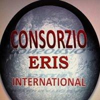 Consorzio ERIS International