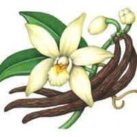 Perpetual Vanilla
