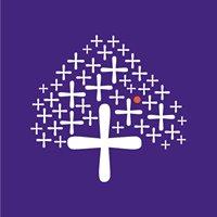 Asit C Mehta Investment Interrmediates Ltd