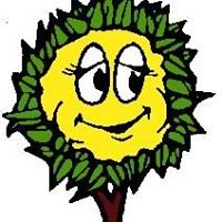 Green Thumb Nursery & Greenhouses