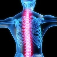 Chiropractic Health Care