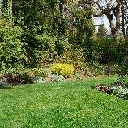 Brentwood Grounds Maintenance Lawn & Garden Service