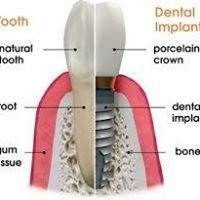 DJ Dental Group