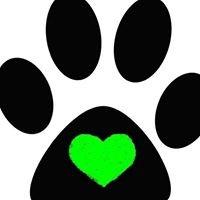 Pawsitive Pet Companion