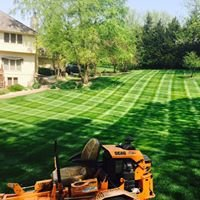 Lawn Care For Less