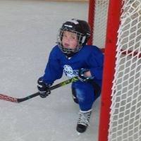 Sniper's Den Hockey Training