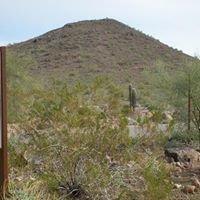 Glendale AZ Real Estate