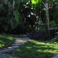 The Garden Guys Nursery And Gardens