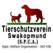 Tierschutzverein Swakopmund (SPCA)