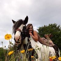 Saddle Creek Vistas LLC/ Cliffs Equestrian Center
