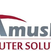 Amushe Computer Solutions cc ( ACS)