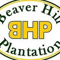 Beaver Hill Plantation