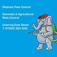 Elephant Pest Control