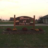 Diamond A Farms