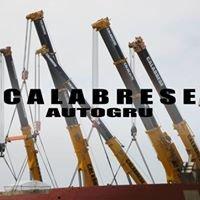 Calabrese Autogru Srl