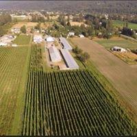 Bredenhof Hops Farm