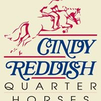 Cindy Reddish Quarter Horses