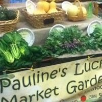 Pauline's Lucky Market Garden