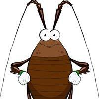 Peregian Pest Control