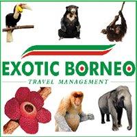 Exotic Borneo Travel Management