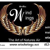 Windwings when a goldwing just isn't enough