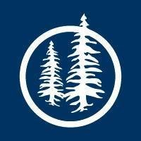 Blue Pine Enterprises Ltd.