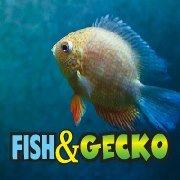 Fish & Gecko