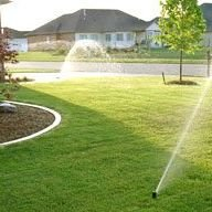 All About Sprinklers