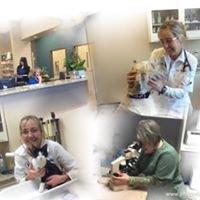 Bassler Veterinary Hospital