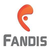 Fandis, S.A. de C.V.