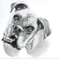 Animal Portraits By Mary-Ann