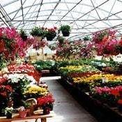 Alcliff Landscaping & Nursery