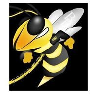 Busy Beez Outdoor Services