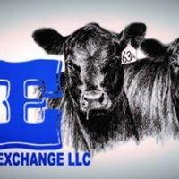 Livestock Exchange