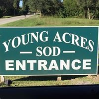Young Acres Sod