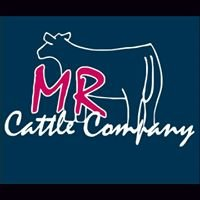 MR Cattle Company