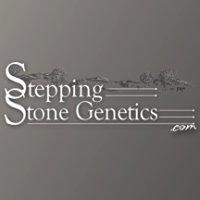 Stepping Stone Genetics