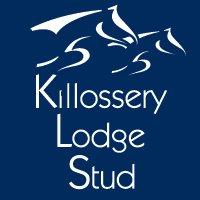 Killossery Lodge