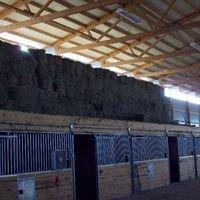 Lost Grove Stables & Hay Sales Inc.