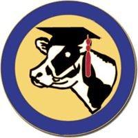 National Holstein Women's Scholarship Organization