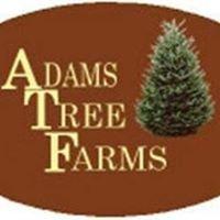 Adams Tree Farms