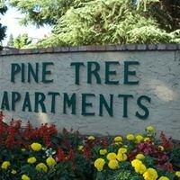 Pine Tree Apartments