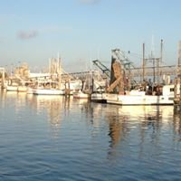 Galveston Deep Sea and Bay Fishing